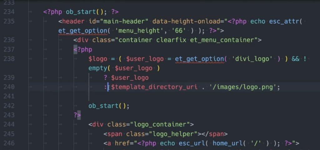Code Block des user_logo in der header.php